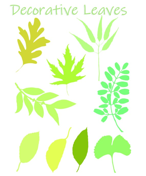 Decorative ClipArt Leaves SVG Set of 9.