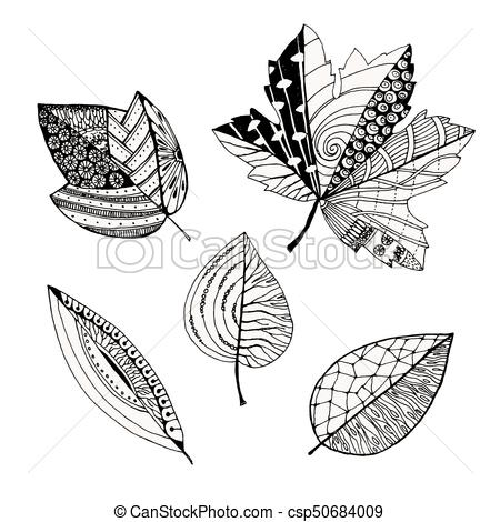 Set of decorative leaves, doodle sketch, Vector illustration, isolated on  white.