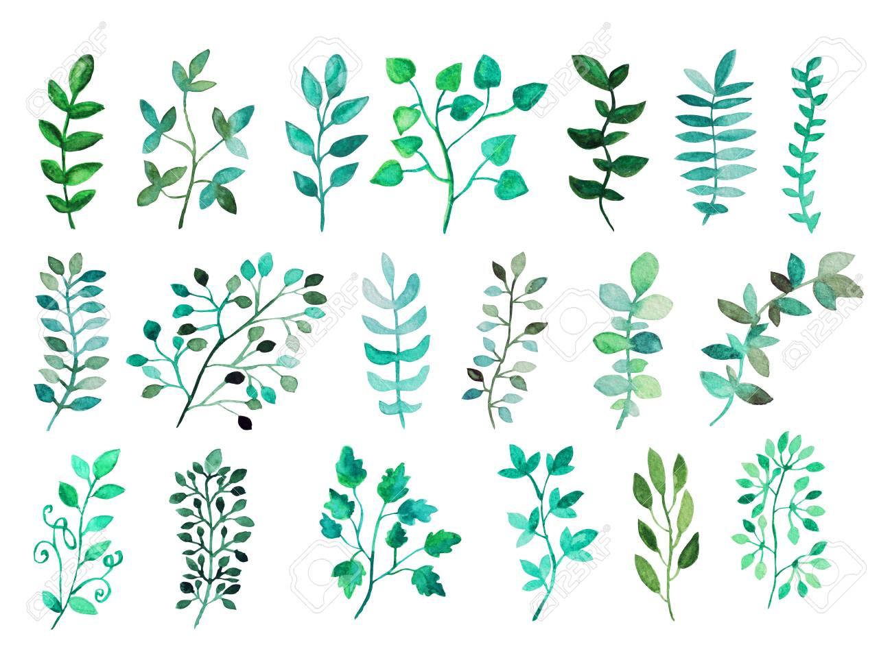 Decorative watercolor leaves clipart, design elements. Can be...