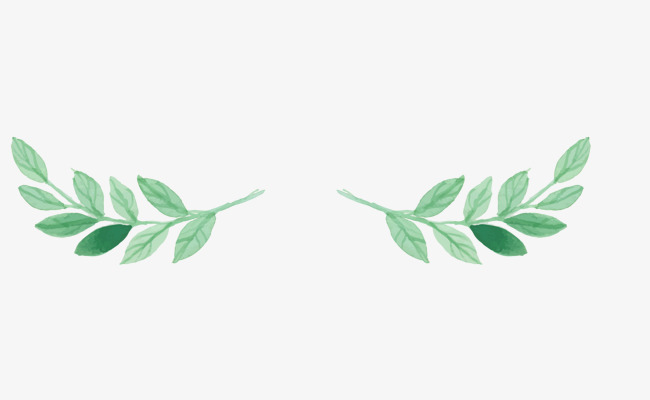 Watercolor Green Leaf Plant Leaves Decorative Patterns, Watercolor.