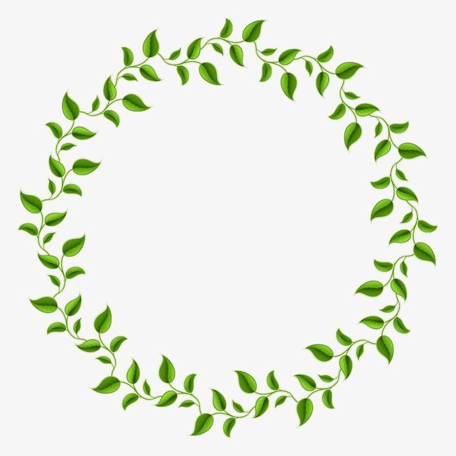 Green Leaves Decorative Circle, Decorative Olive Branch, Green.