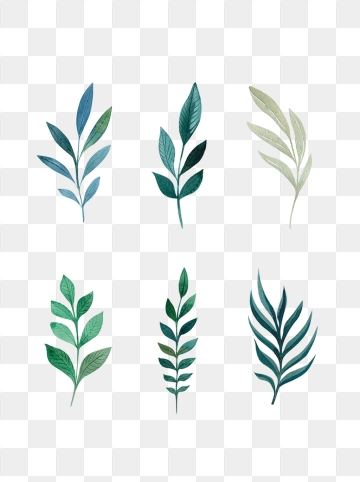 Decorative Leaf Png, Vector, PSD, and Clipart With Transparent.