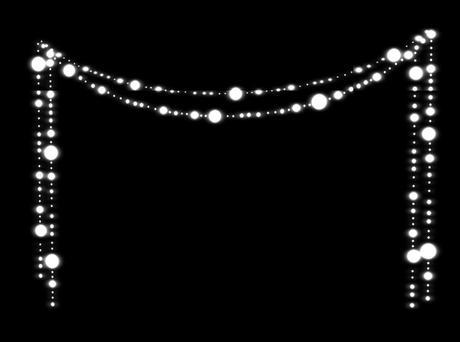 Christmas Light Hanging Business