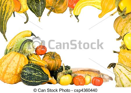 Stock Photography of Gourd and squash frame.