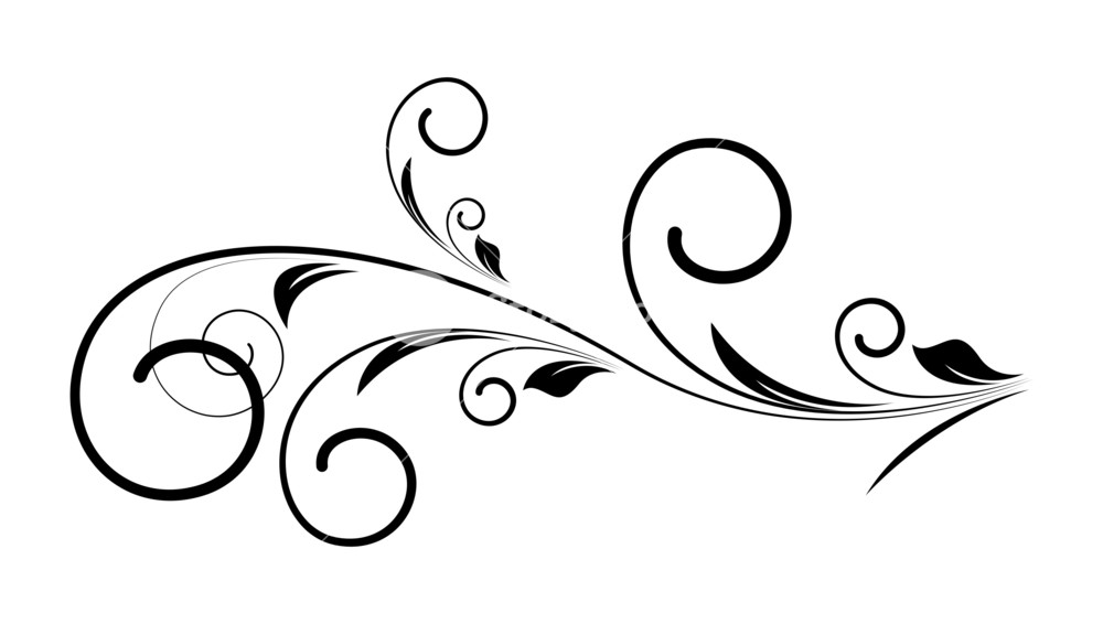 Decorative Swirl Floral Vector Royalty.