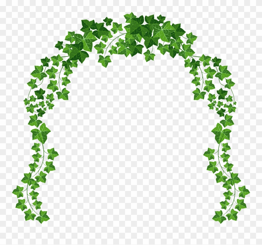 Ivy Clipart Decorative.