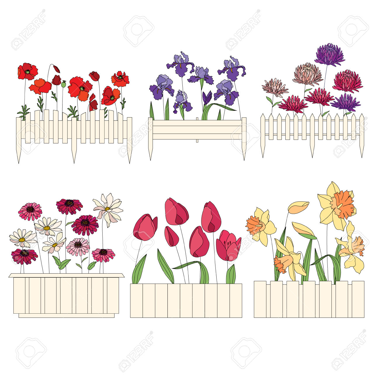 Flower Pots With Cultivated Flowers. Decorative Fence. Plants.