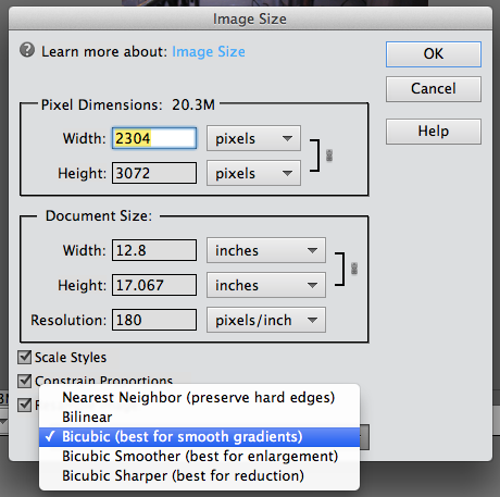 Photoshop Elements 11; Reducing a photo's file size.