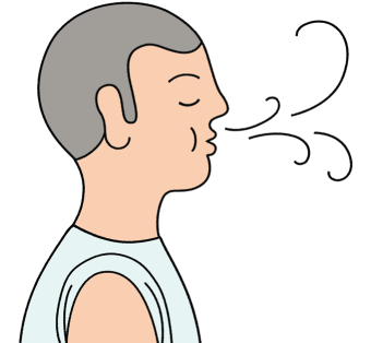 14 cliparts for free. Download Breathing clipart nose breathing and.
