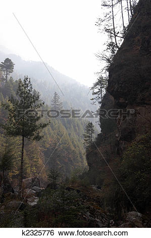 Stock Images of Deep ravine with morning mist, Himalayas, Nepal.