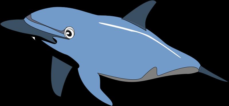 Clipart ocean creatures.