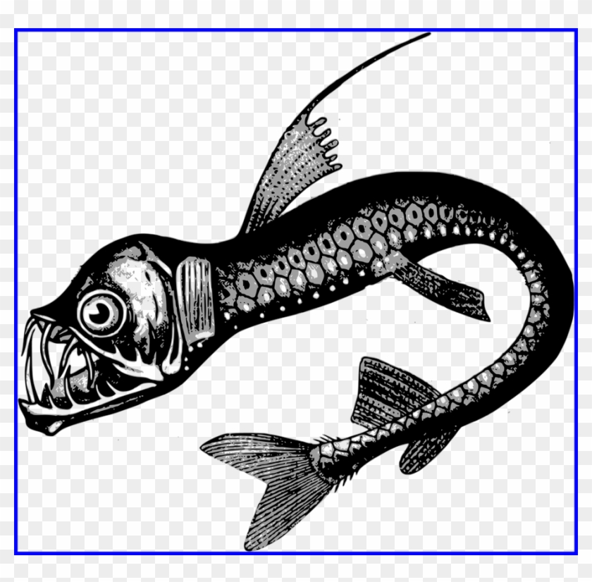 Drawing Clipart Fish.