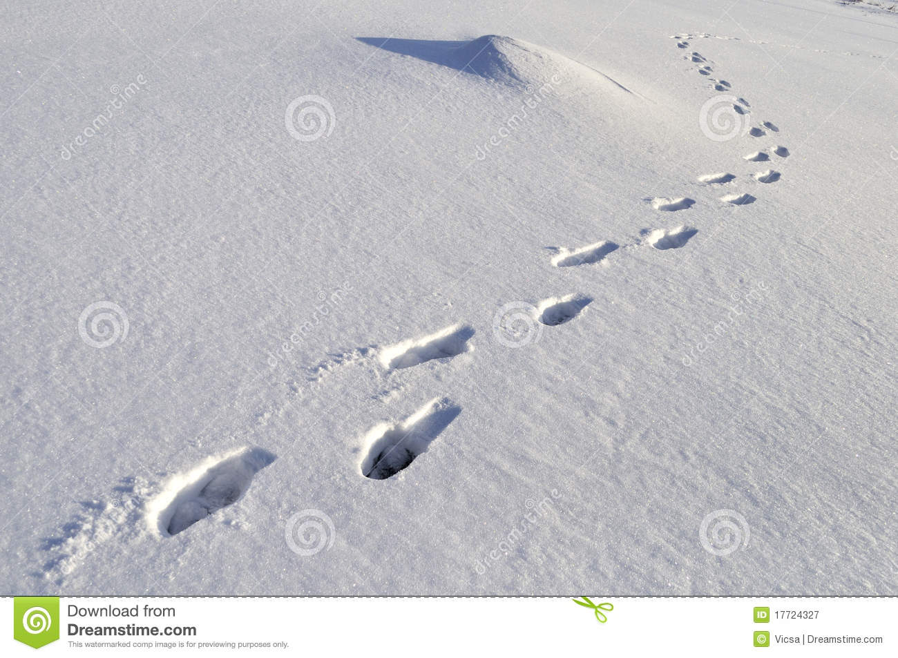 Human Footprints Deep Snow Stock Photos, Images, & Pictures.
