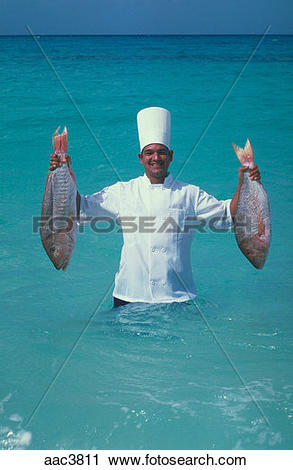 Stock Photography of A Caribbean chef wearing his white jacket and.