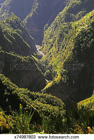 Stock Photo of Sunlight on deep valley with stream, Madeira.