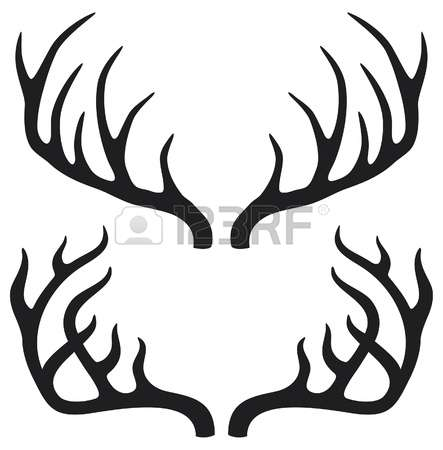 11,659 Deer Antlers Stock Vector Illustration And Royalty Free.