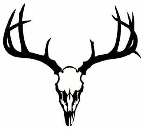 Deer Skull Antler Clip Art free image.