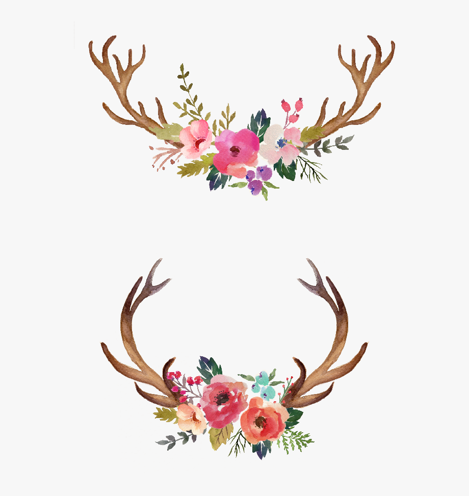 Antlers And Flowers Png Free.