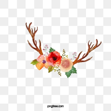 Antlers Png, Vector, PSD, and Clipart With Transparent Background.