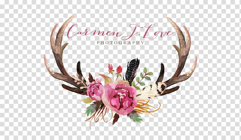 Deer Antler Floral design Flower Moose, deer transparent background.