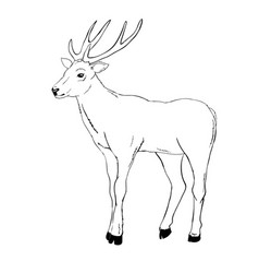 Deer Head Clip Art Black and White Vector Images (70).