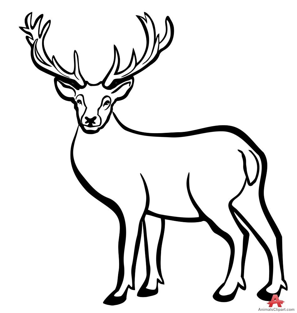 Deer Black And White Clipart.
