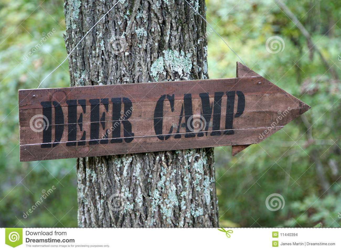 Deer camp sign stock photo. Image of directional, sport.