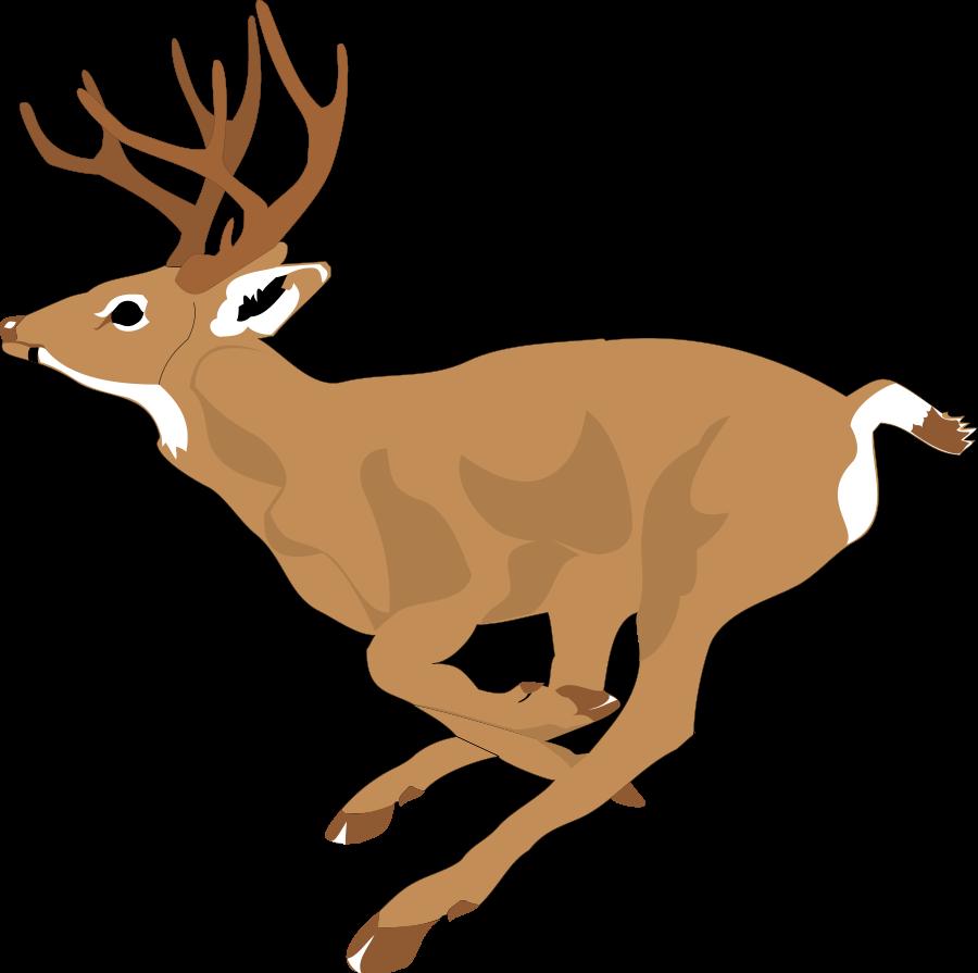 Deer clipart 2.