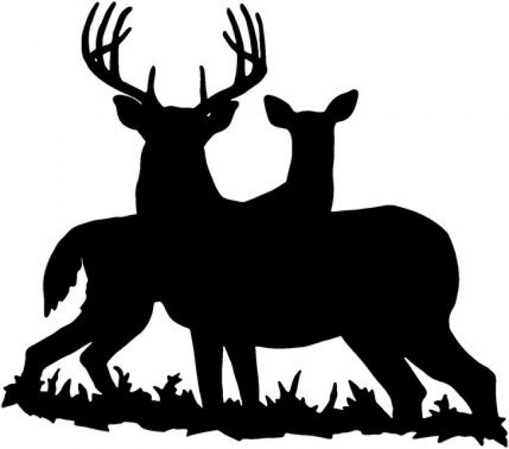 whitetail deer clip art black and white.