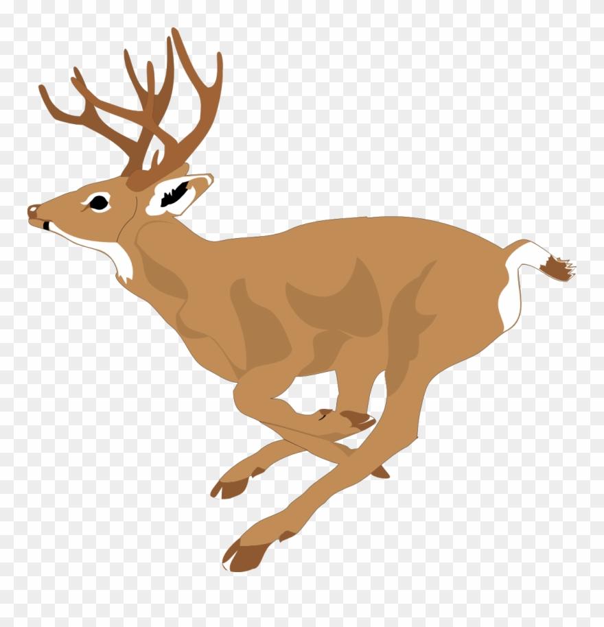 Deer Clipart Free At.