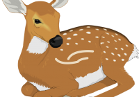 Deer Clipart Free.