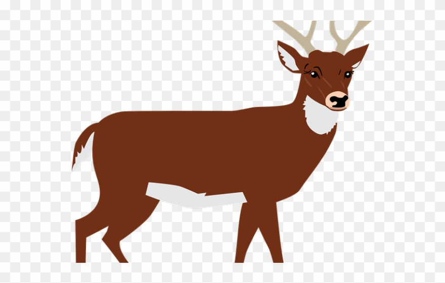 Forest Clipart Deer.