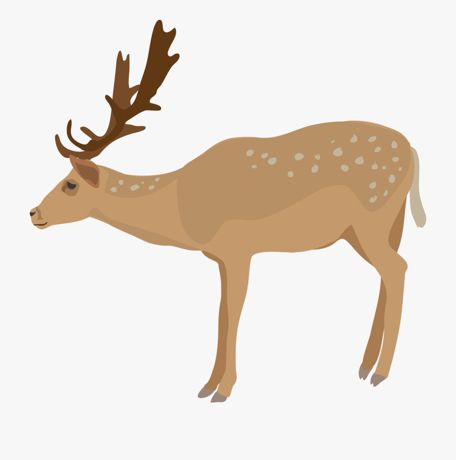 Cute Deer Clipart Free Clipart Images.