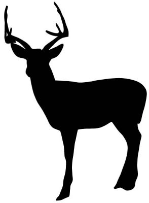 Why do I feel like having this free vector deer is going to.