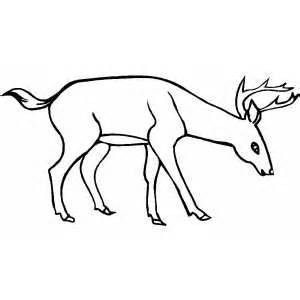 Running Deer Coloring Pages.