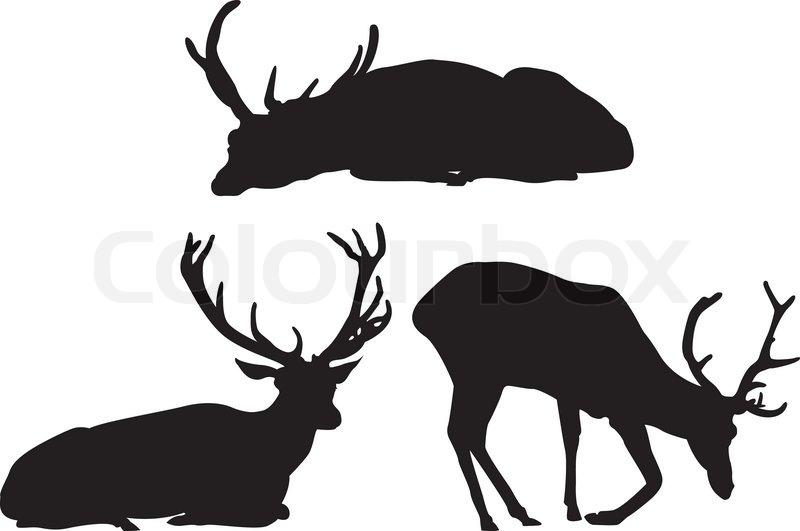 Deer Drinking Water Clipart (52+).