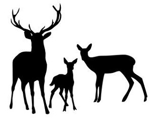 Deer Family v2 Decal Sticker.