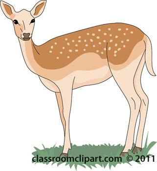 Clipart Of A Deer.
