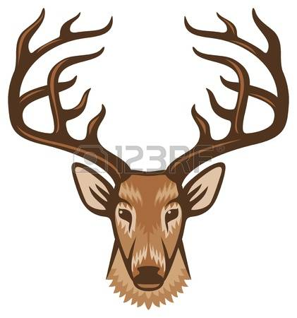 8,024 Deer Head Stock Illustrations, Cliparts And Royalty Free.