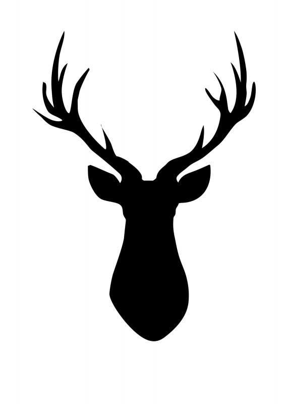 Deer head clipart black and white 5 » Clipart Station.