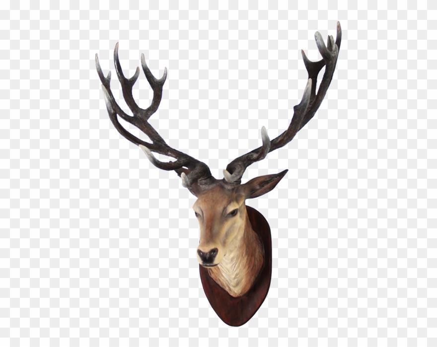 Clipart Png Deer Best.