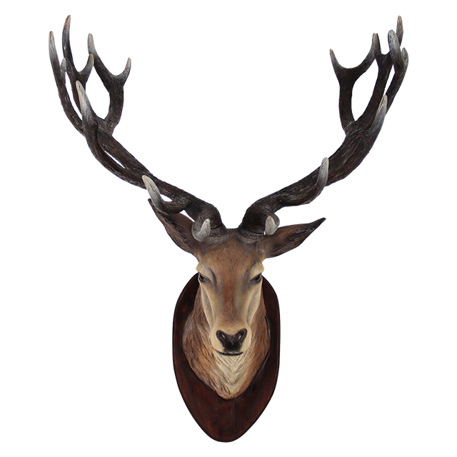Deer PNG Images Transparent Free Download.