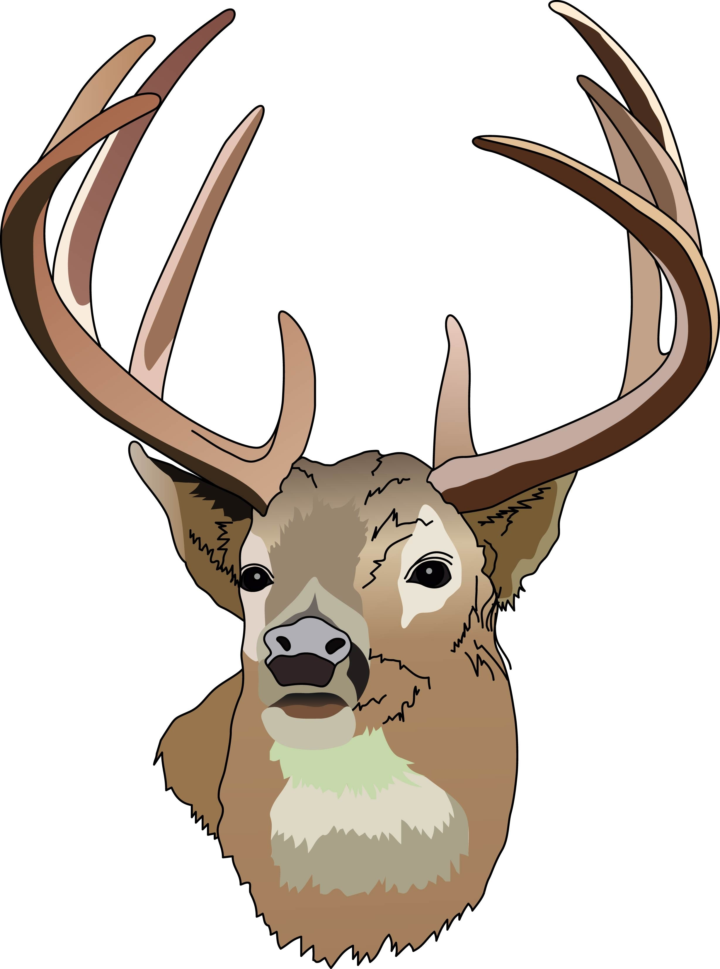 Free clipart images deer hunter in tree.