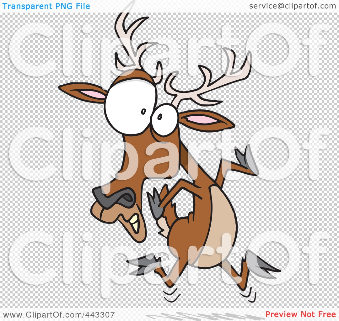 Download Free png 28+ Collection of Deer In Headlights.