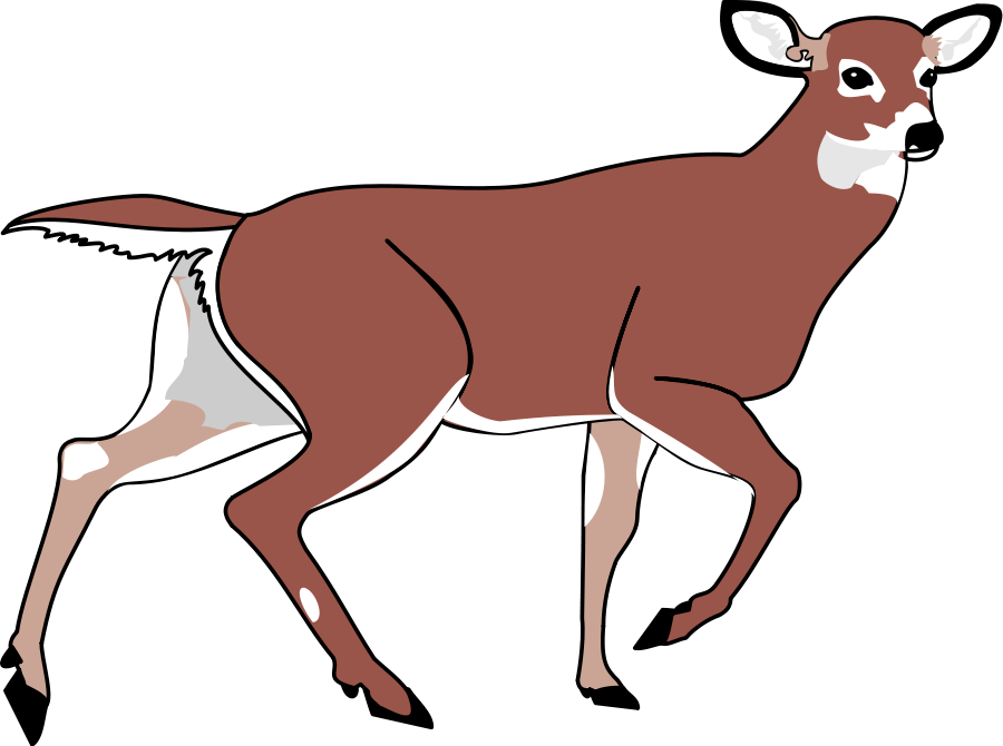 Baby Deer Clipart.