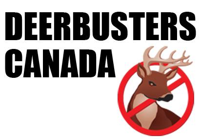 About Deerbusters.com.