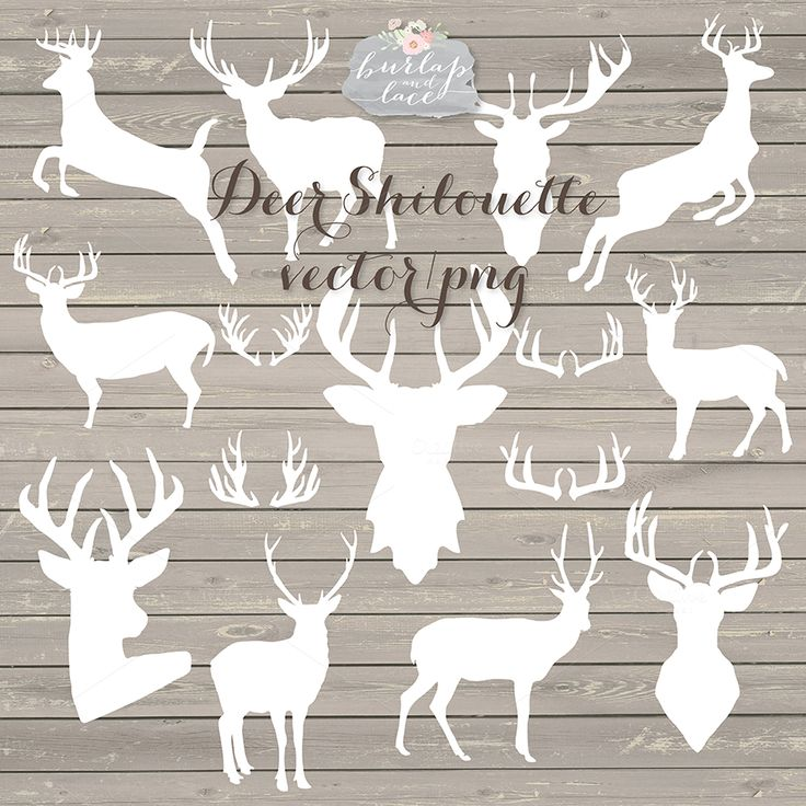 Deer netting clipart #6