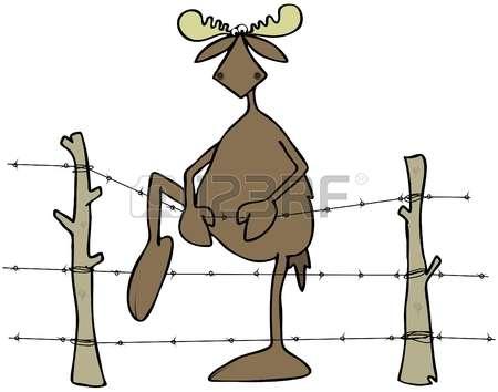 Deer netting clipart #19