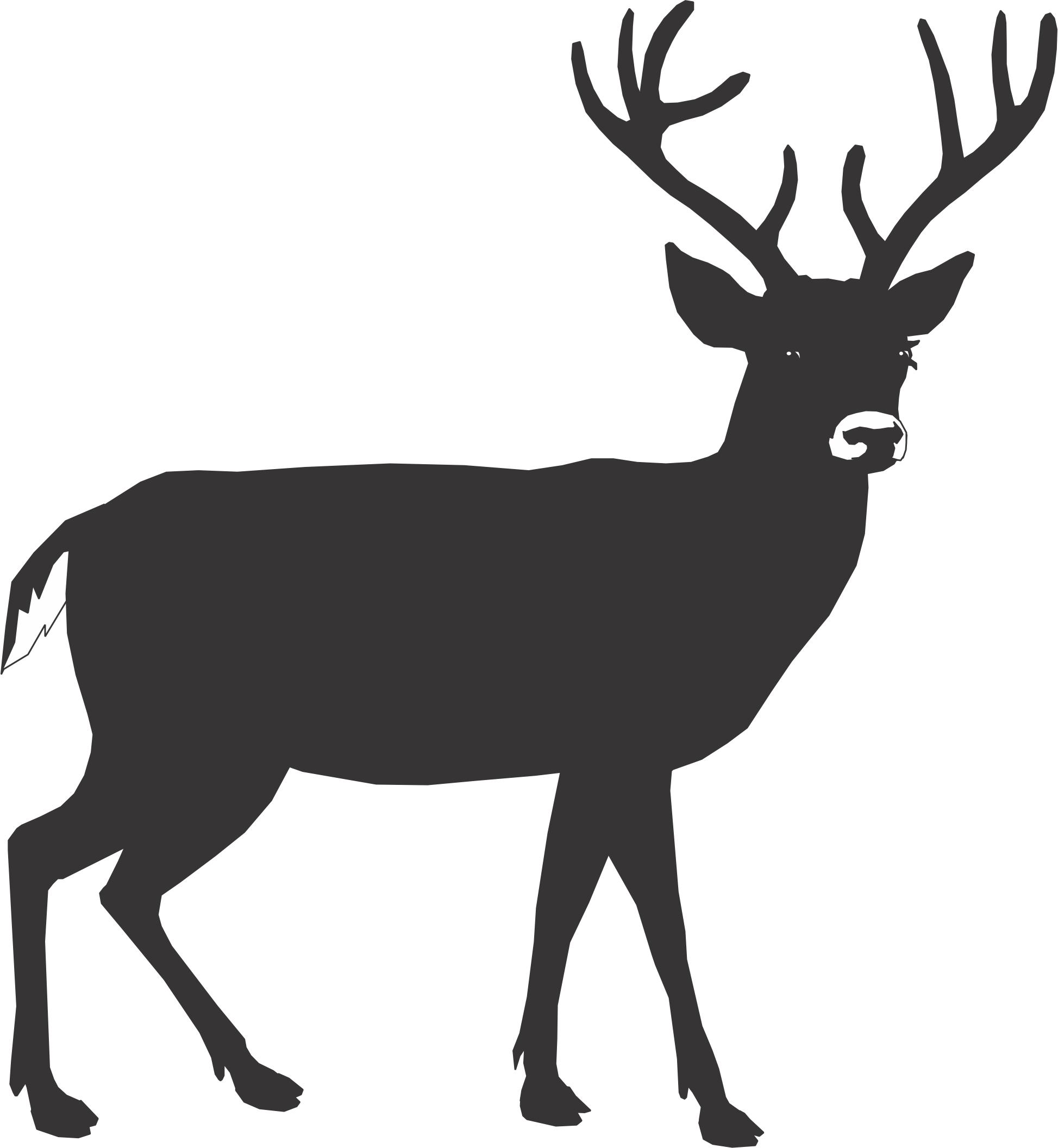 Walking Deer Cliparts.