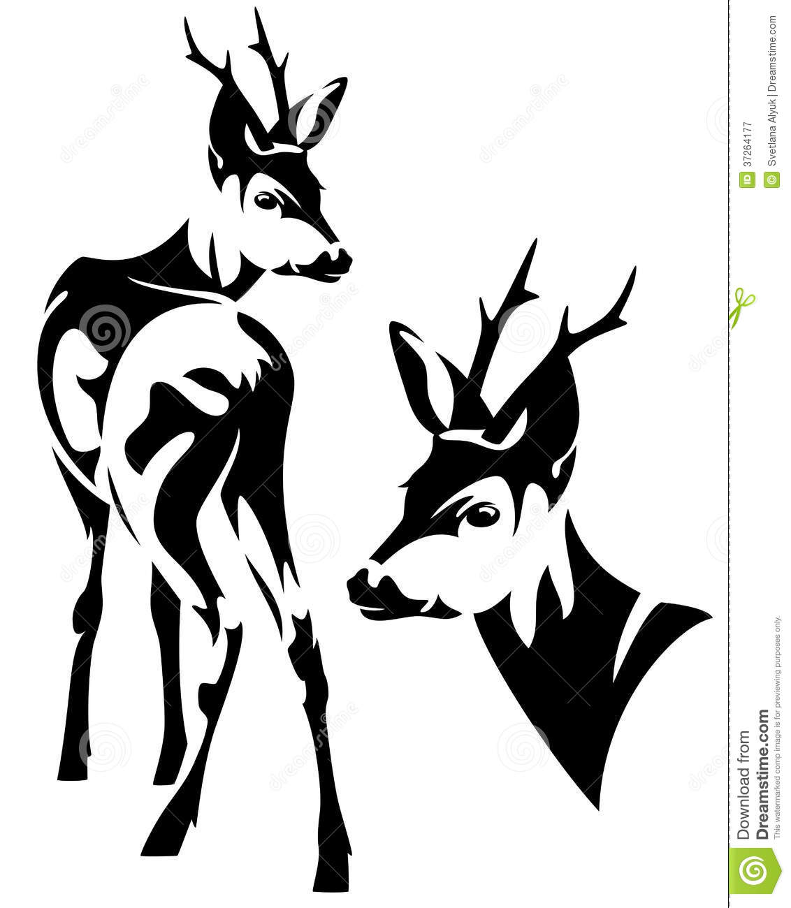 Roe Deer Vector Royalty Free Stock Photography.